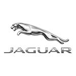 15cm_CMYK_White-bkgrd_Jag-Logo